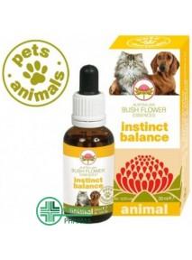Pets Animals Instinct...