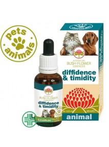 Pets Animals Diffidence...