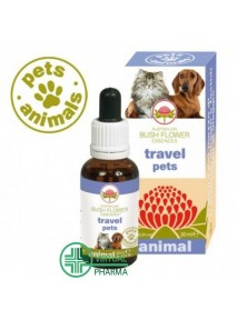 Pets Animals Travel Pets 30...
