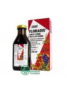 Salus Floradix Ferro 250 ml