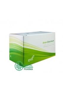 OTI Anas Coccinum H 17...